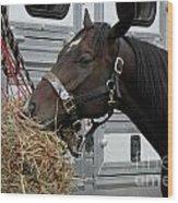 Horse Eating Hay Wood Print