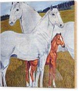 Horse Family Wood Print