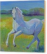 Horse Fancy Wood Print by Gwen Carroll
