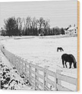 Horse Farm In Winter Wood Print