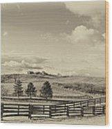 Horse Farm Sepia Wood Print