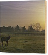 Horse Farm Sunrise Wood Print
