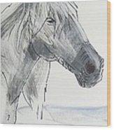 Horse Head Drawing Wood Print