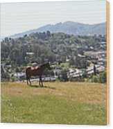 Horse Hill Mill Valley California 5d22662 Wood Print