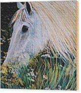 Horse Ign Wood Print