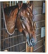 Horse In A Box Stall II - Horse Stable Wood Print by Lee Dos Santos