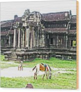 Horse In Front Of Outer Building In Angkor Wat In Angkin Angkor Wat Archeological Park-cambodia Wood Print