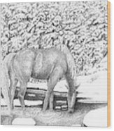 Horse In Snow Wood Print