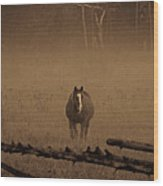 Horse In The Mist Wood Print