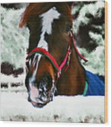 Horse In The Snow Wood Print
