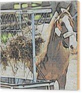 Horse N Hay Wood Print
