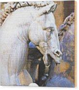 Horse Of Neptune Wood Print