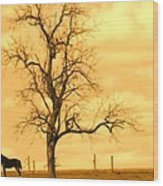 Horse On The Hill Wood Print
