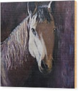 Horse Painting Wood Print