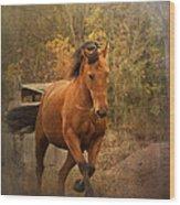 Horse Power Wood Print