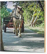 Horse Powered Mackinac Island Wood Print
