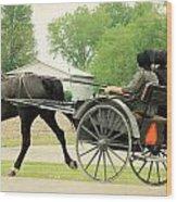 Horse Powered Transportation Wood Print