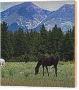 Horse Ranch Below The Peaks Wood Print