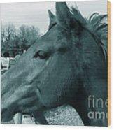 Horse Sense Wood Print by Steven Milner