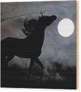 Horse Silhoette Wood Print