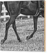 Horse Stepping Wood Print