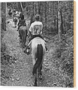 Horse Trail Wood Print by Frozen in Time Fine Art Photography