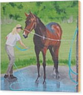 Horse   Wash Wood Print