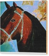 Horse With Long Forelocks Wood Print