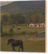 Horseback Riding In Gatlinburg Wood Print by Dan Sproul