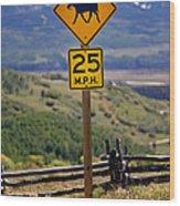 Horseback Riding Sign Wood Print