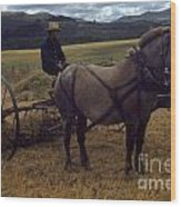 Horsedrawn Harvester Hay Rake On The Berta Ranch Carmel Valley California Circa 1950 Wood Print