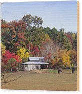 Horses And Barn In The Fall 2 Wood Print