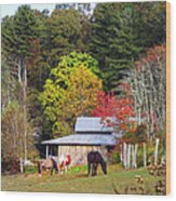 Horses And Barn In The Fall Wood Print