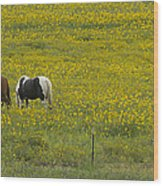 Horses And Wildflowers   #8511 Wood Print