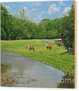 Horses At Home On The Range Wood Print