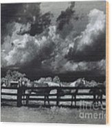 Horses Black And White Infrared Stormy Sky Nature Landscape Wood Print