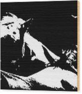Horses - Black And White Wood Print