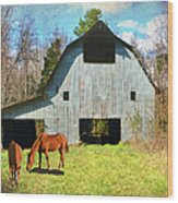 Horses Call This Old Barn Home Wood Print