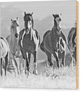 Horses Crest The Hill Wood Print by Carol Walker