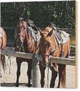 Horses Glacier National Park Montana Wood Print