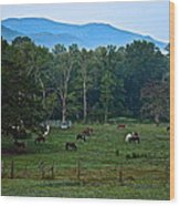 Horses Graze At Dawn Wood Print