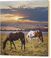 Horses Grazing At Sunset Wood Print