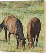 Horses Grazing Wood Print