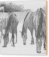 Horses Grazing Pencil Portrait Wood Print