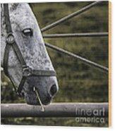 Horse's Head Wood Print