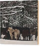 Horses In Snow Wood Print by Tanya Jacobson-Smith