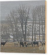Horses In The Snow   #7940 Wood Print