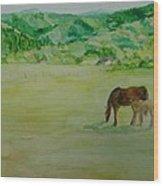 Horses Mare Foal Pastures Rural Landscape Original Art Oregon Western Artist K. Joann Russell Wood Print