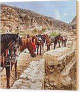 Horses Of Petra Wood Print