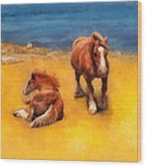Horses On The Coast Of Brittany Wood Print
